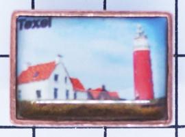 PIN_NH3.003 pin Texel