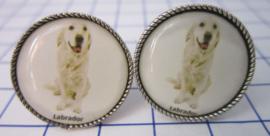 Manchetknopen verzilverd witte Labrador MAK035