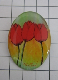 BRO 604 broche rode tulpen