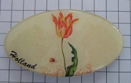 Haarspeld ovaal HAO 310 schilderij oude tulp, origineel in rijksmuseum
