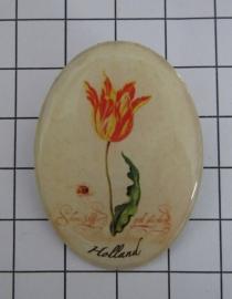 BRO 600 broche geschilderde rood gele tulp