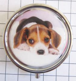 PIL 304 pillendoosje met spiegel hond
