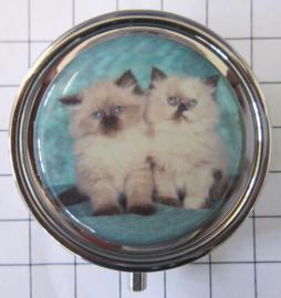 PIL 375 pillendoosje met spiegel twee perzische poesjes