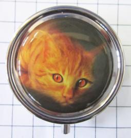 pil 340 pillendoosje met spiegel rode kat