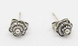 kleine Zeeuwse knop oorstekers zko716 EAN 8718481420096 geplaatst