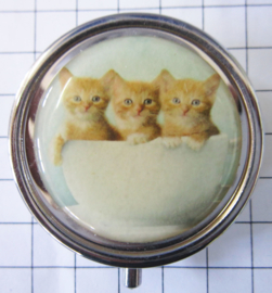 pil 342 pillendoosje met spiegel 3 poesjes kopje