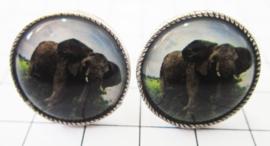 MAK052 Manchetknopen verzilverd olifant