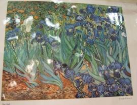grote gelamineerde poster irissen, Vincent van Gogh