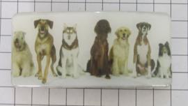 HAR501 haarspeld rechthoek honden 8 cm speld