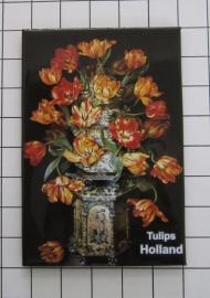 koelkastmagneet  Tulpen MAC:20.120