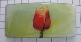 Haarspeld rechthoek HAR307, Tecla tulp rood/geel