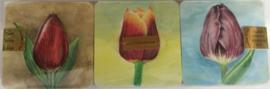 Onderzetters 6 stuks, verschillende geschilderde tulpen