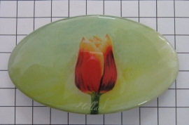 Haarspeld ovaal HAO 307 Tecla tulp rood met gele rand
