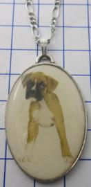 Ketting met verzilverde hanger hond boxer HAN501