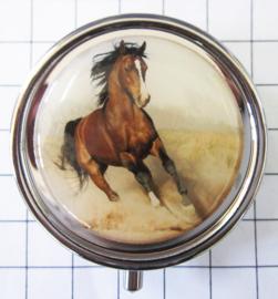 PIL 337 galopperend bruin paard met witte bles