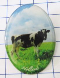 BRO 501 broche koe