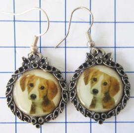 oorbellen van tin, nikkelvrij en zwaar verzilverd met afbeelding hond