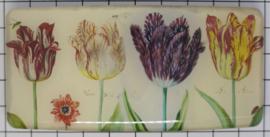 HAR 328 haarspeld rechthoek geschilderde tulpen van beroemde schilder Jacob van Marrel