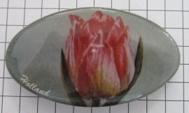 Haarspeld ovaal HAO 309 roze geschilderde tulp