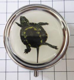PIL 404 pillendoosje schildpad