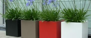 plantenbakkeninverschillendekleuren.jpg