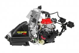 Rotax Max Senior Evo 2020