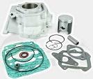 Rotax Cylinder en Onderdelen