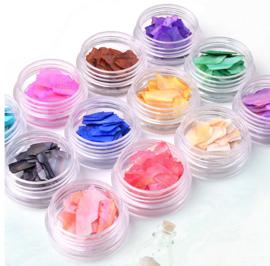 sea shell 12 kleuren.