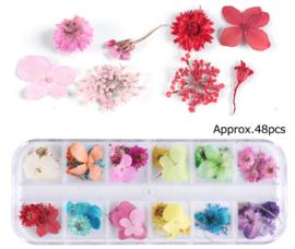 dried flower box 5