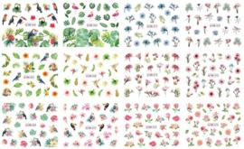 waterdecal set BN color serie 12 stuks