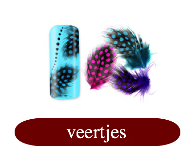 veertjes - feather.jpg
