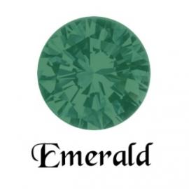 MC Rose VIVA SS5 Emerald