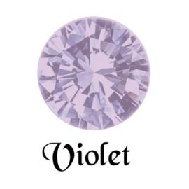 MC Rose VIVA SS5 Violet