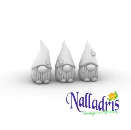 10.061 Gnomes