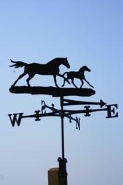 Paard Merrie met Veulen Windwijzer Traditioneel