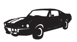 Mustang Hangplant haak 40cm