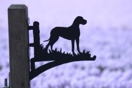 Deense Dog Hangplant haak 30cm