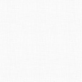 WHITE OUT, Wavey Grid White On White 34033B 1
