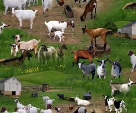 Quiltstof met verschillende geiten en bokken