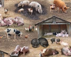 Quiltstof met verschillende varkens  en biggetjes 338 brown