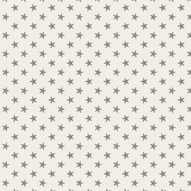 Tiny Star Grey 130039