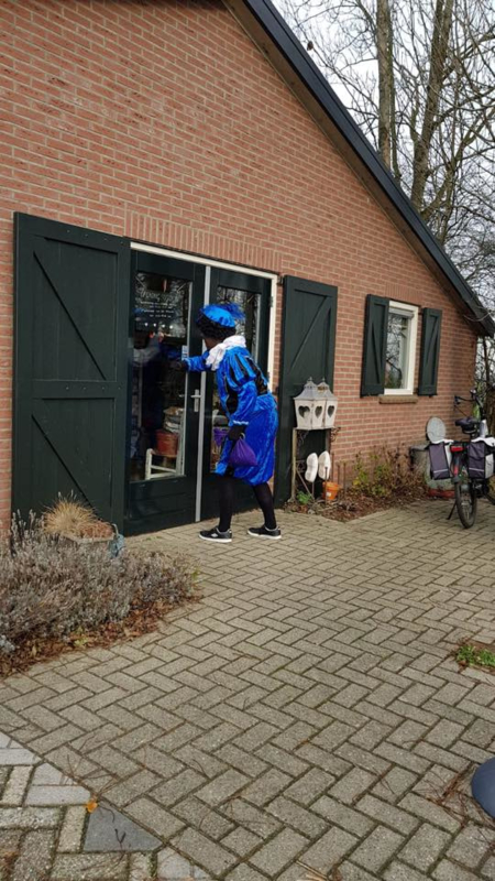 Blog...Sinterklaas bee