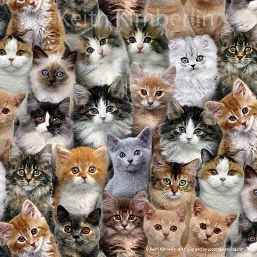 Blog...Nieuw binnen - quiltstof met poezen en katten