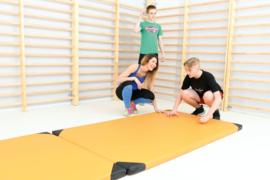 Sportmat/Gymmat (200 x 120 x 6 cm)