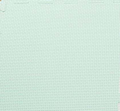 Mintgroen 30 x 30 x 1,2 cm.png