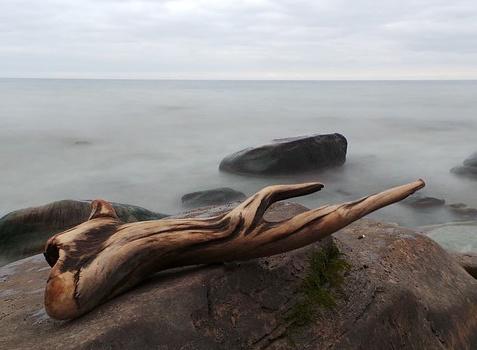 Rock & Driftwood