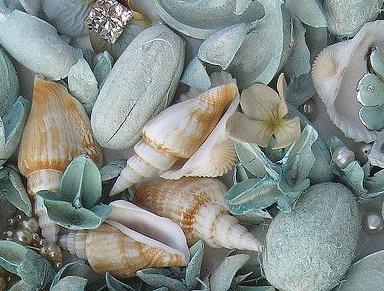 Sea Salt and Sage