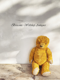 Old french bear