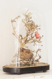 Oude stolp met vogeltjes GERESERVEERD RESERVATION
