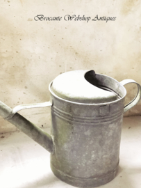 Sinc watering can